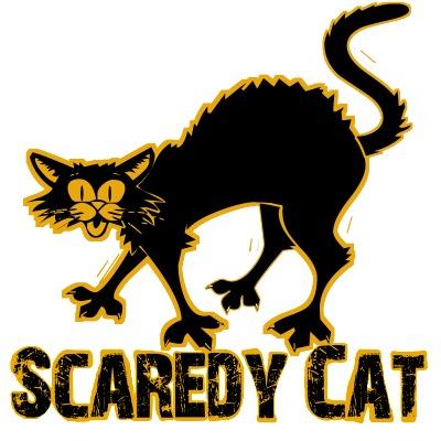 scaredy cat, halloween cat