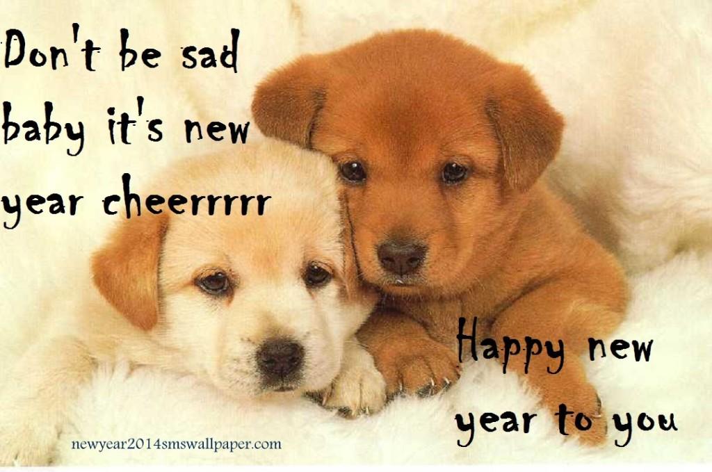sad happy new year, 2014